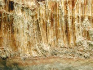 Asbestos Testing Orange County